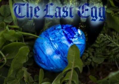 the last egg freelance young adult fantasy dragons kindle book cover